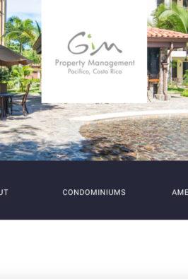 diseño-web-costa-rica